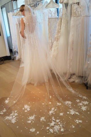 Verona veil
